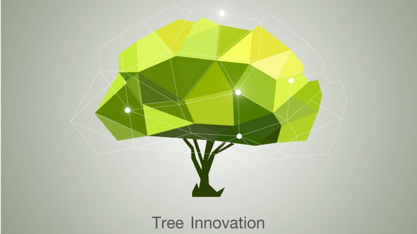 tree inovation